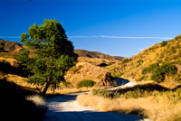 SIDE ROAD - SAN FRANCISQUITO CANYON